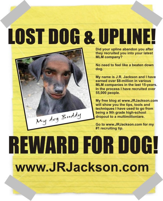 Have You Seen My Dog  JrjacksonCom